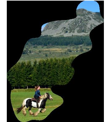 Communauté de communes Montagne d'Ardèche